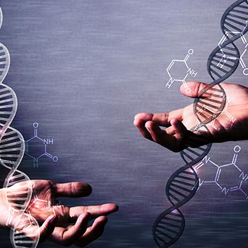 遺伝が抜け毛の原因って本当なの?影響力と対策は?