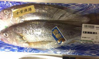 お魚を食べましょう🐟