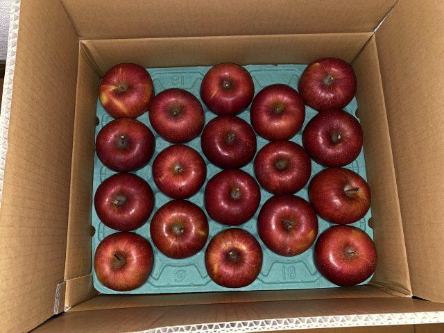 りんごは育毛に効果があるのか調べてみました(^^)/