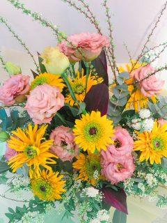 今週のお花🌷